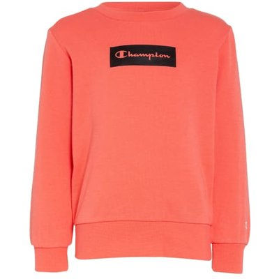 Champion Sweatshirt rot | CHAMPION SALE