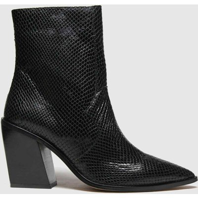 Schuh Black Breanne Snake Leather Point Boots