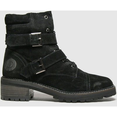 Red Or Dead Black Reem Suede Lace Up Boots