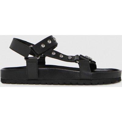 Schuh Black Primrose Leather Studded Sandals
