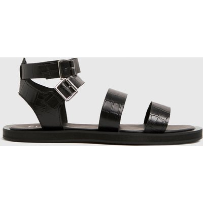 The Edit By Schuh Black Petra Croc Leather Sandals