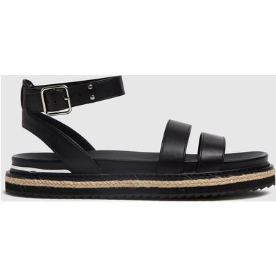 Schuh Black Teal Buckle Sandal Sandals