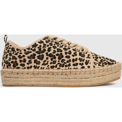 Schuh Beige & Brown Mila Canvas Espadrille Lace Up Trainers
