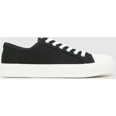 Schuh Black Mia Canvas Lace Up Trainers