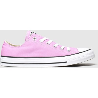 Converse Pink Ox Trainers