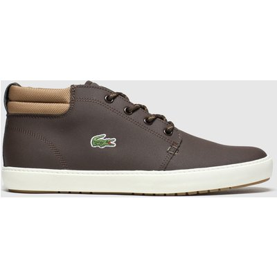 Lacoste Brown Ampthill Terra Trainers