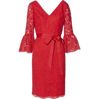 Andrea Scallop Lace Dress