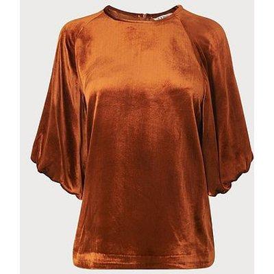 Noemi Rust Velvet Blouse, Rust