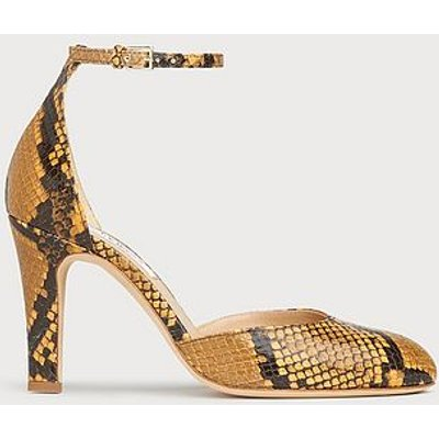 Xandra Yellow Snake Print Courts