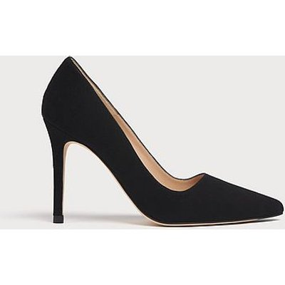 Katie Black Suede Pointed Toe Courts, Black