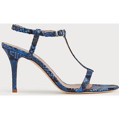 North Blue Snake Print T-Bar Sandals, Cobalt