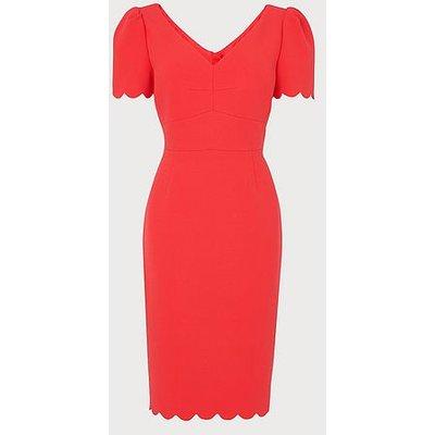Enid Orange Scallop Edge Shift Dress, Geranium