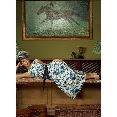 Hodgkin Toile de Jouy Print Cotton Dress, Blue White