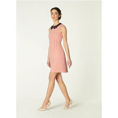 Maisie Pink Crepe Lace Collar Dress, Pale Rose
