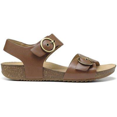 Tourist Sandals - Dark Tan - Wide Fit