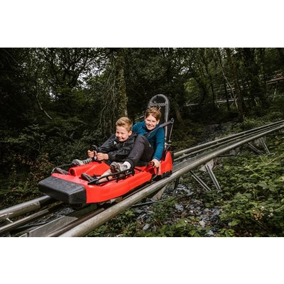 Zip World Fforest Coaster Shared Sled Ride - Adult and Child