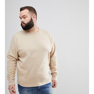 Brave Soul PLUS – Basic-Sweatshirt mit Rundhalsausschnitt-Cremeweiß