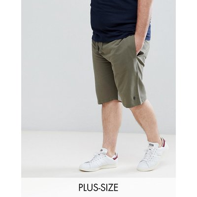 French Connection – PLUS – Jersey-Shorts-Grün