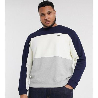 Lacoste PLUS – Sweatshirt mit Rundhalsausschnitt-Blau