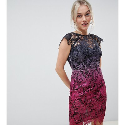 Paper Dolls Petite midi lace dress with scalloped back in ombre metallic lace-Multi