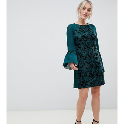 Paper Dolls Petite velvet lace shift dress with sheer sleeve in emerald-Green