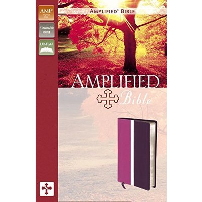 Amplified Bible: Dark Orchid / Deep Plum, Italian Duo-Tone [Jun 25, 2011] Zonder