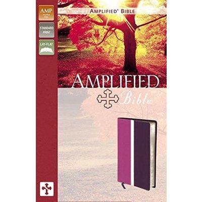 Amplified Bible: Dark Orchid / Deep Plum, Italian Duo-Tone [Jun 25, 2011] Zonder