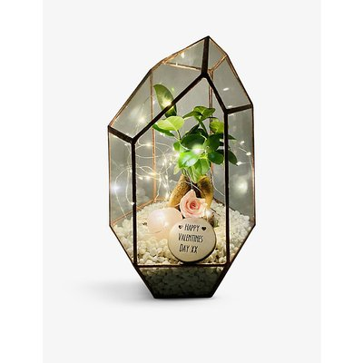 Valentine's Bonsai gem copper terrarium