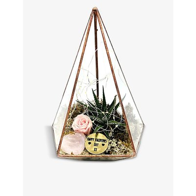 Valentine's Jewel copper terrarium