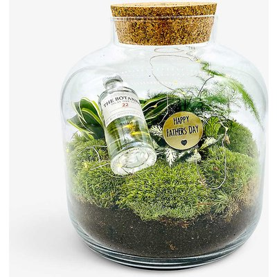 Father's Day Baby Grande Gin Ecosystem