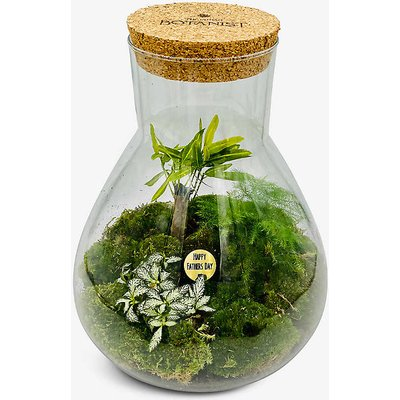 Father's Day Petite Ecosystem