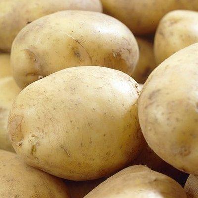 potato Rocket