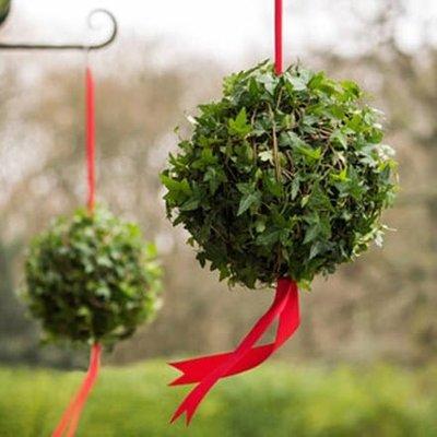 Hedera Living ivy ball