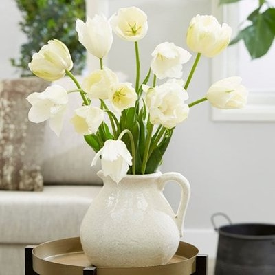 Pearl tulip collection