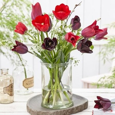 Plush velvet tulip collection