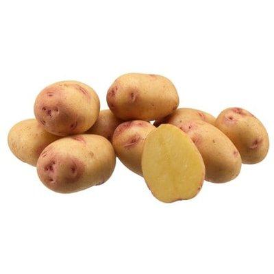 potato Carolus
