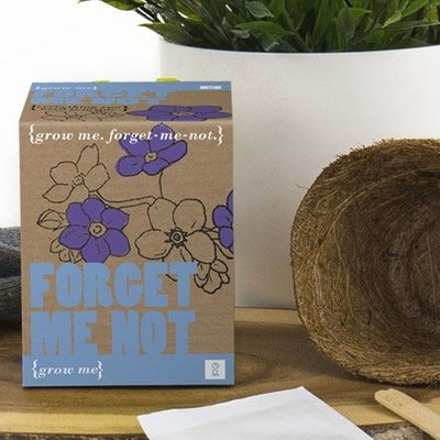 Forget me not - grow me kit