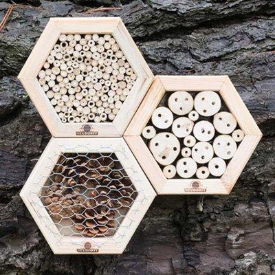 Hexagonal insect boxes ladybird box