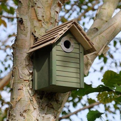 New England nest box - green green