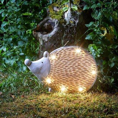 Woodstone inlit hedgehog