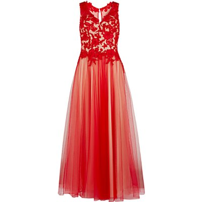 Gina Bacconi Lace And Mesh Maxi Dress