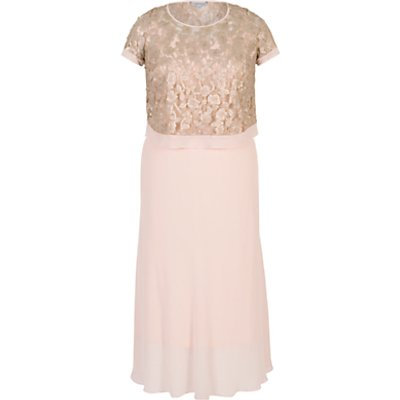 Chesca Trellis Applique Lace And Chiffon Dress