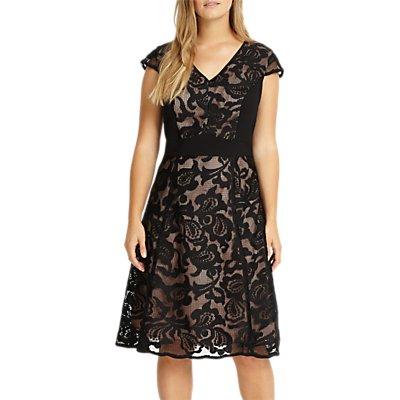 Studio 8 Cleo Lace Dress, Black