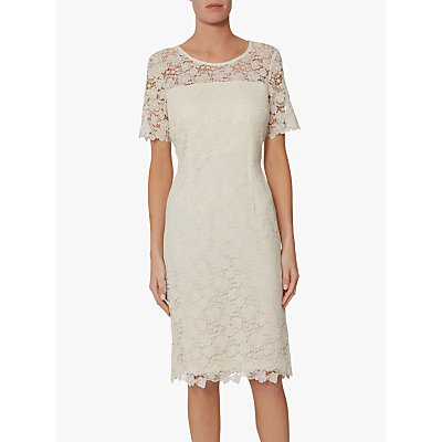 Gina Bacconi Sapphire Lace Embroidered Dress