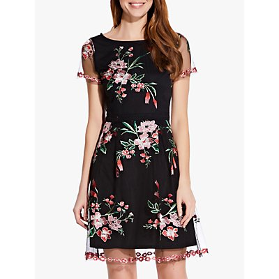 Adrianna Papell Floral Embroidery Flared Dress, Black/Multi