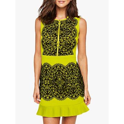 Damsel in a Dress Lanna Lace Dress, Chartreuse