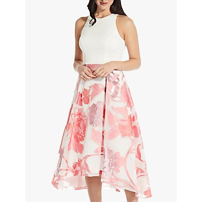 Adrianna Papell Organza Floral Print Flared Dress, Pink/Multi
