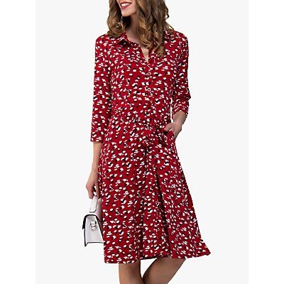 Jolie Moi Animal Print Fit and Flare Shirt Dress, Red/Multi