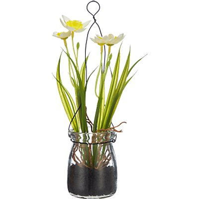 John Lewis Artificial Daffodils In A Jar  White - 4027234854403