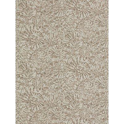 Anthology Ammonite Wallpaper